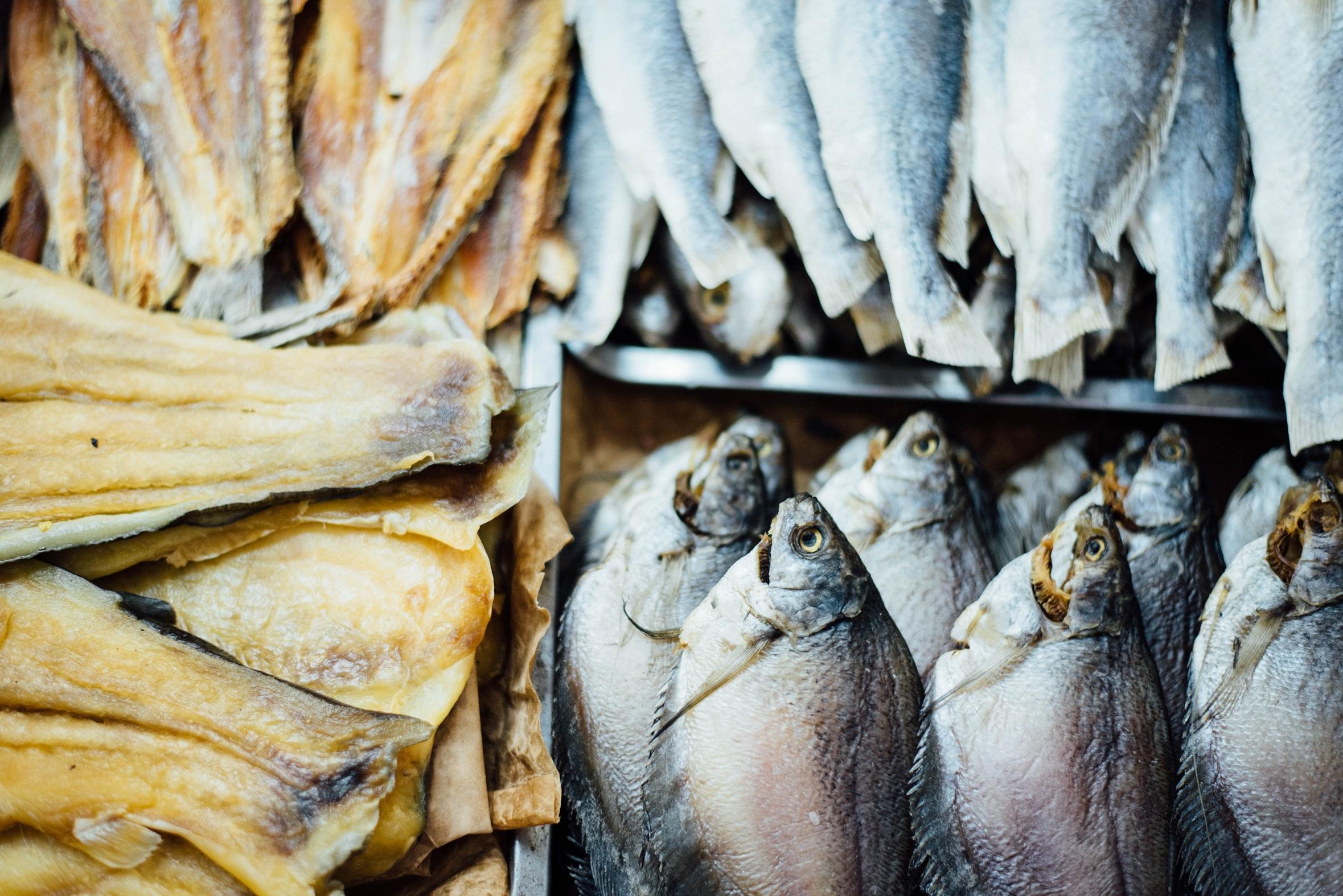 Mérieux NutriSciences_export fish