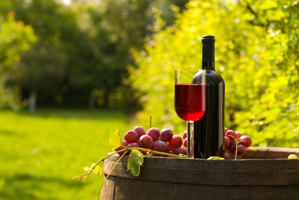 Mérieux NutriSciences Wine