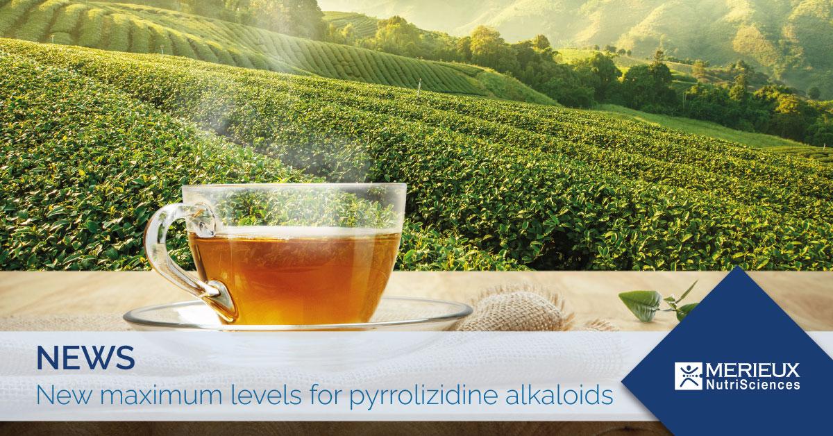 maximum levels of pyrrolizidine alkaloids