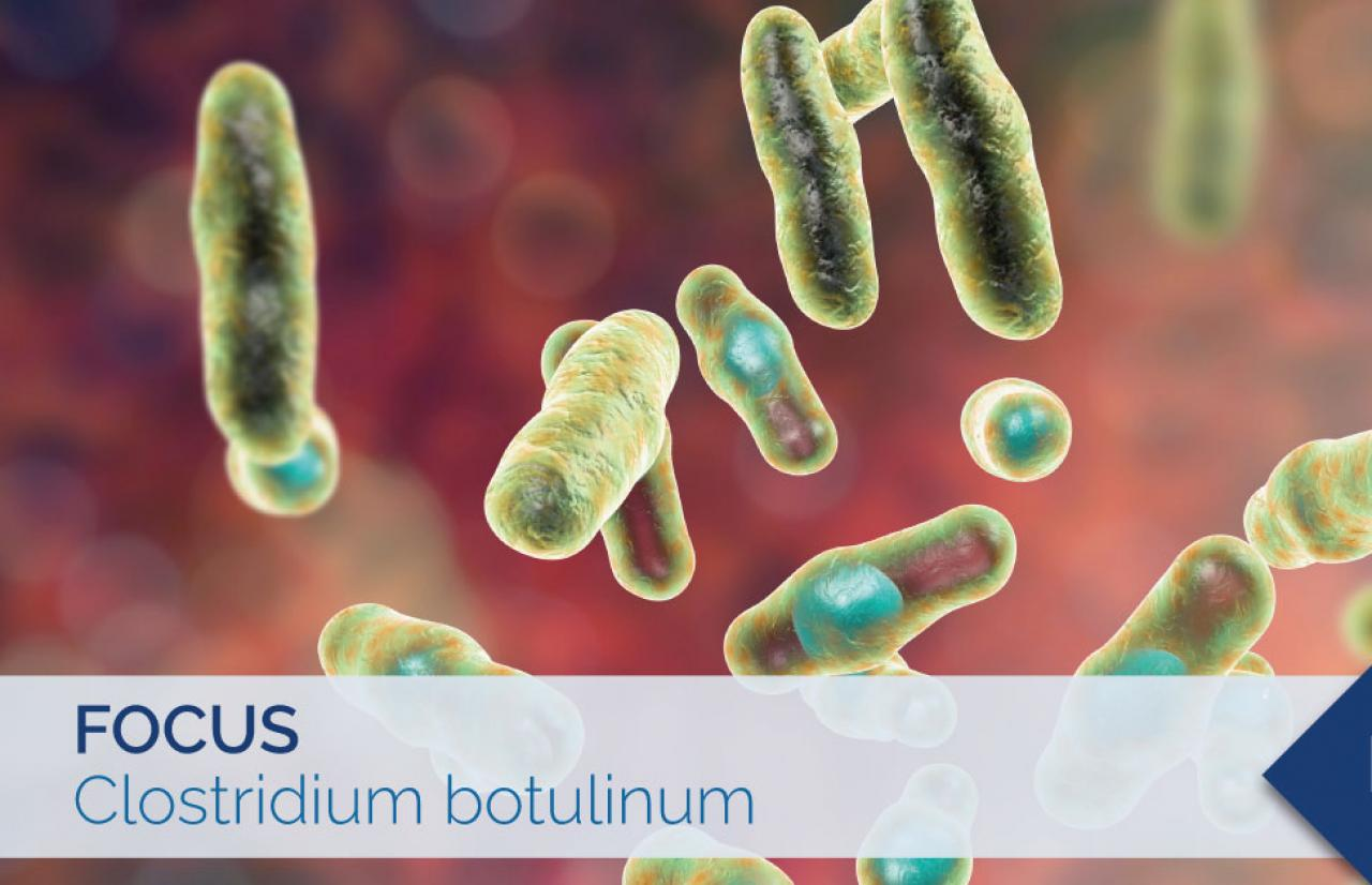 clostridium botulinum food safety