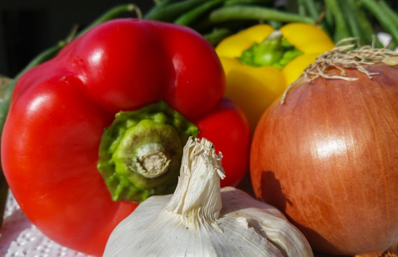 Mérieux NutriSciences_AgriFood