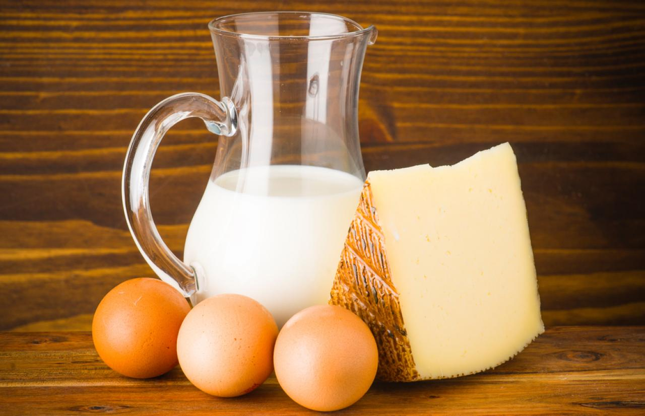 Mérieux NutriSciences_eggandmilk