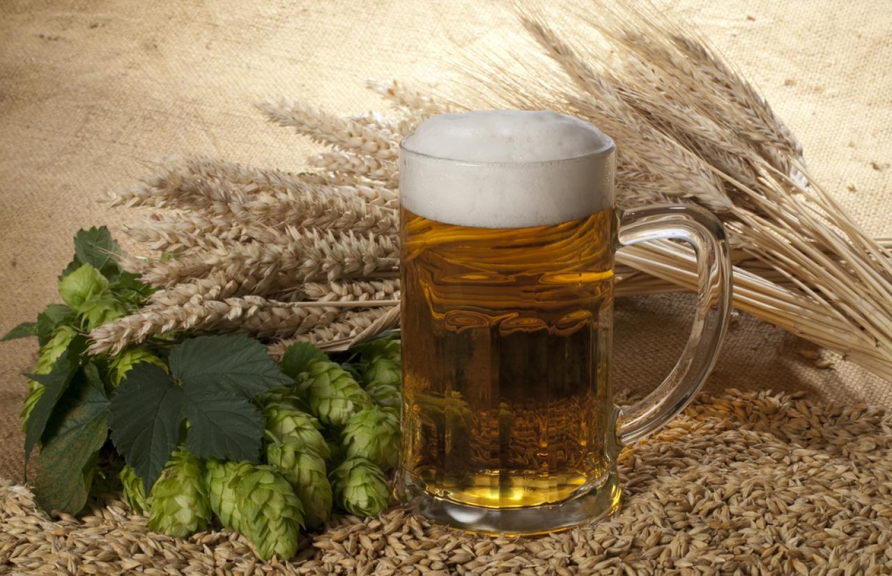 Mérieux NutriSciences_Beer