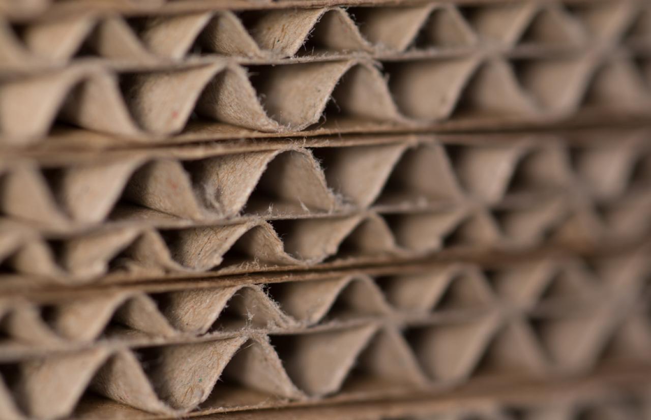 Mérieux NutriSciences_Cardboard
