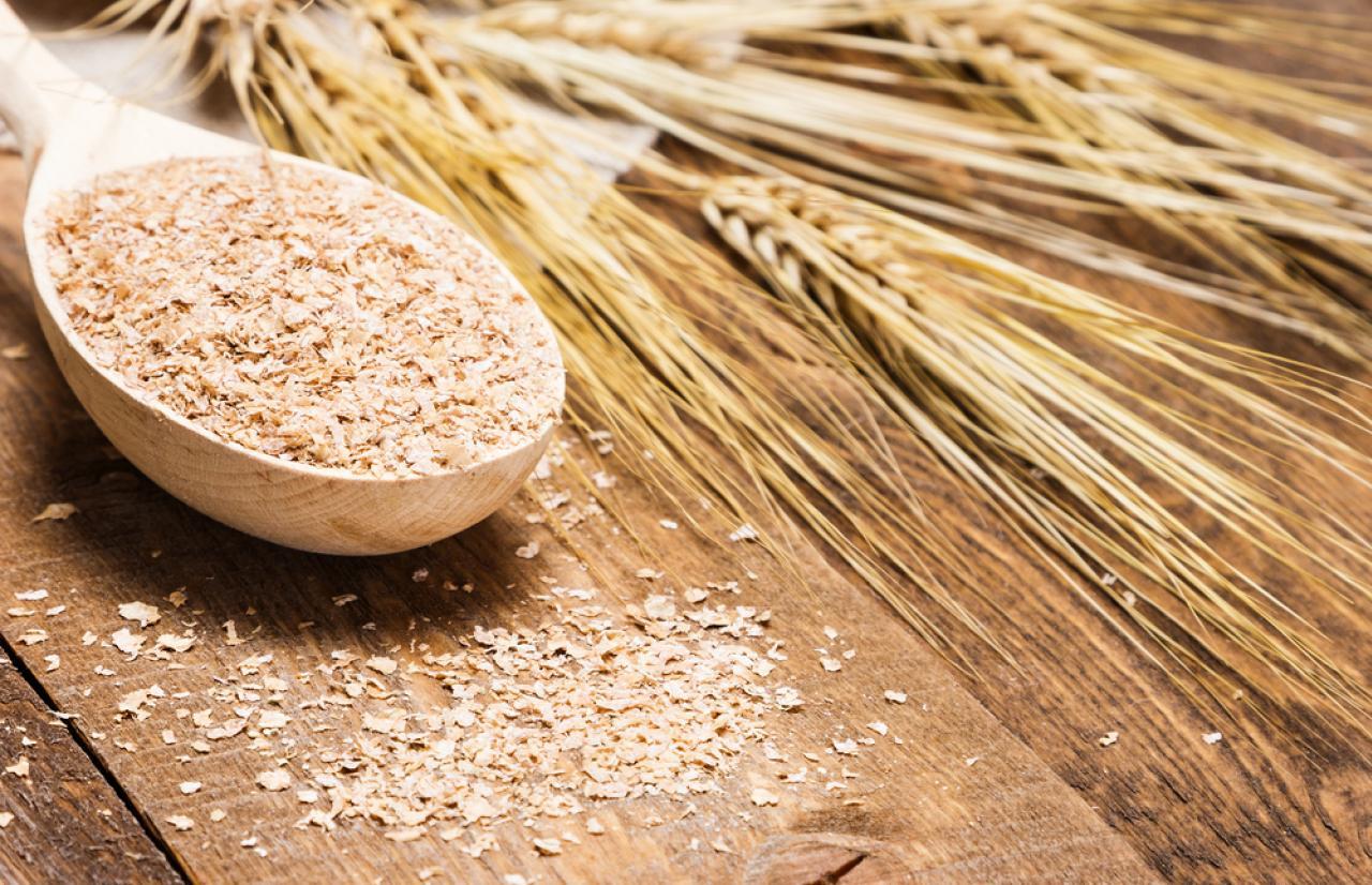 Mérieux NutriSciences_Dietary Fiber