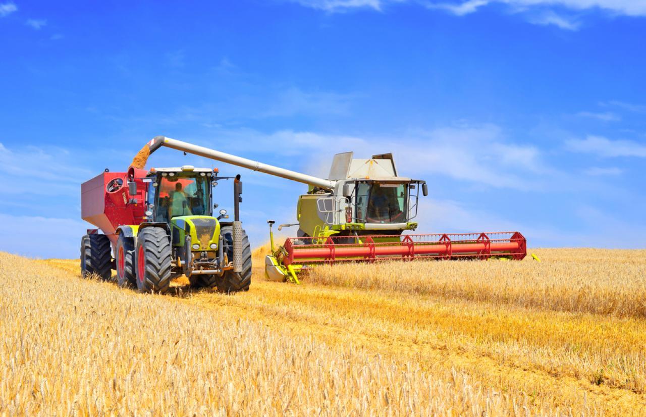 Mérieux NutriSciences_Harvesting