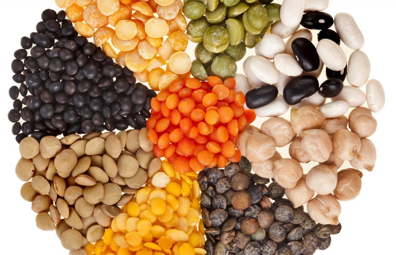 Mérieux NutriSciences_legumes