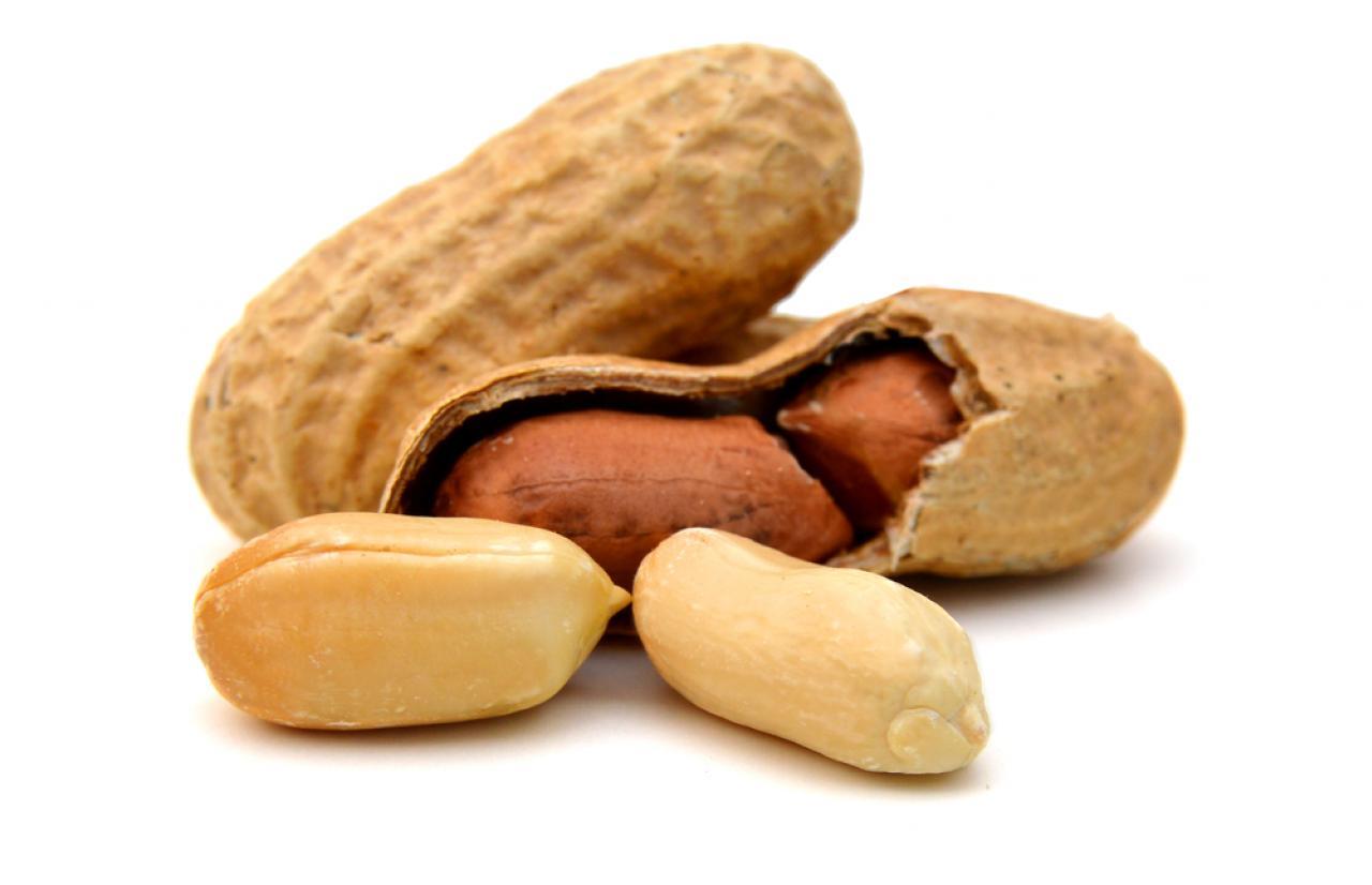 Mérieux NutriSciences_Peanuts