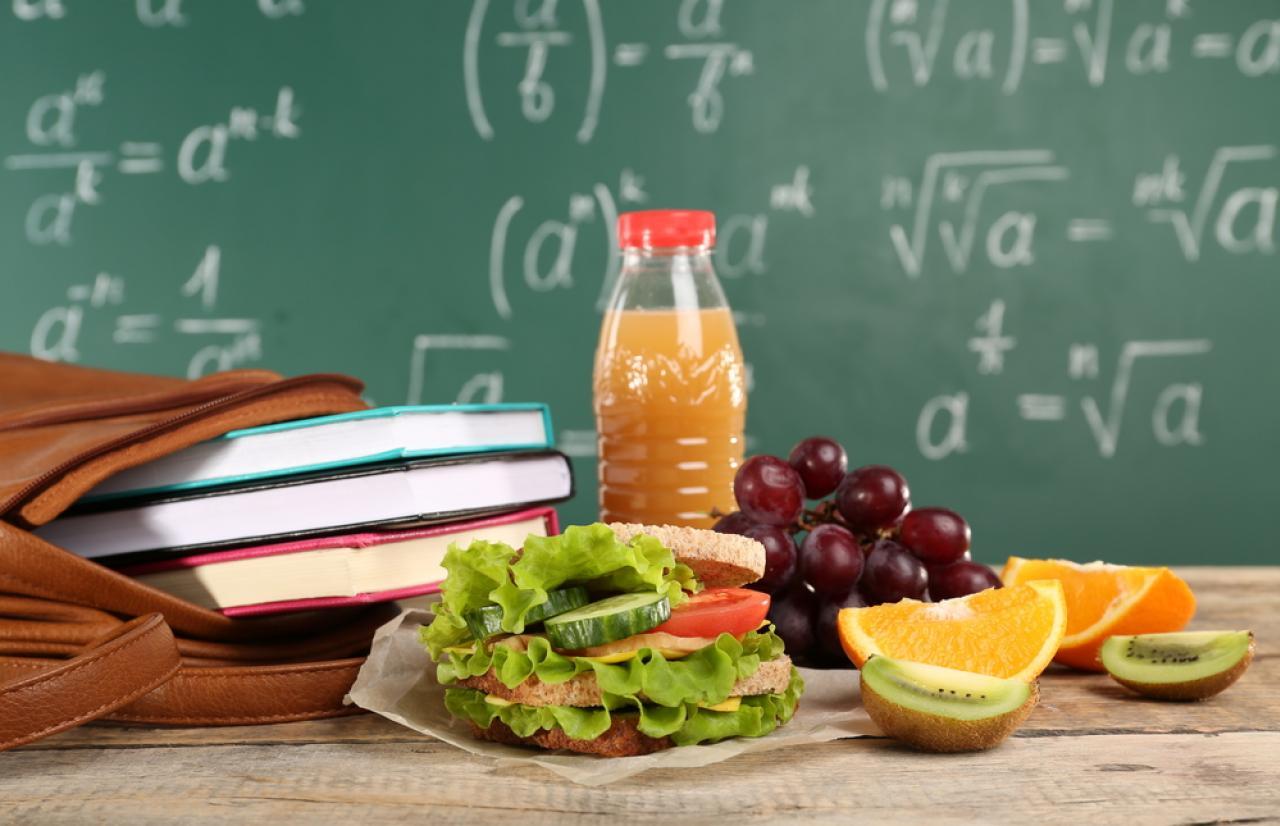 Mérieux NutriSciences_School