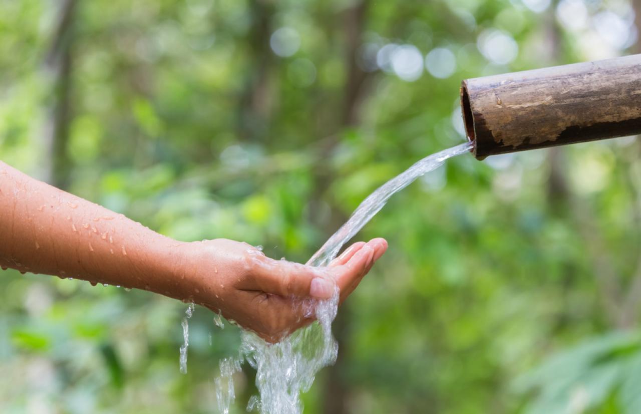 Mérieux NutriSciences_Water