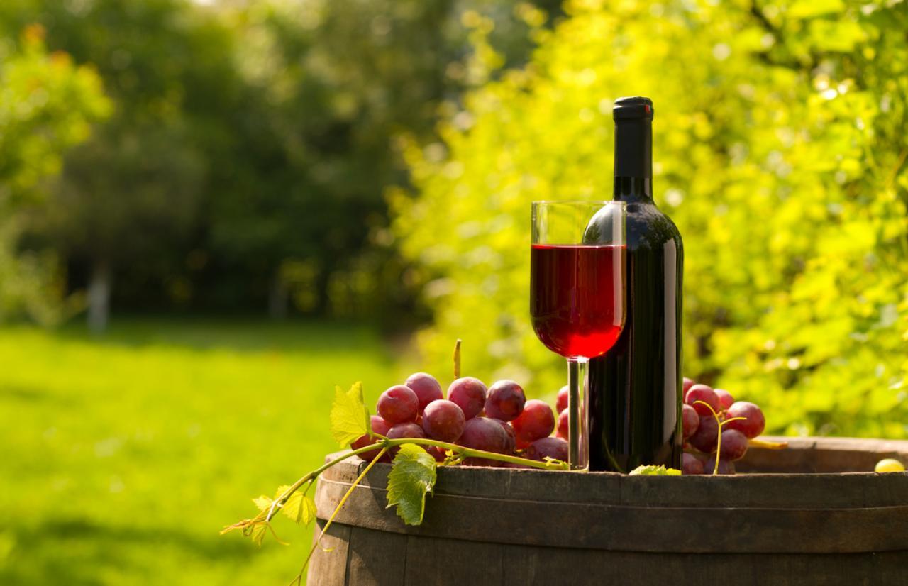 Mérieux NutriSciences_Wine