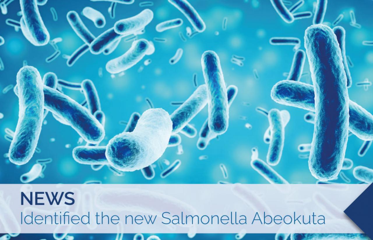 Salmonella abeokuta nigeria